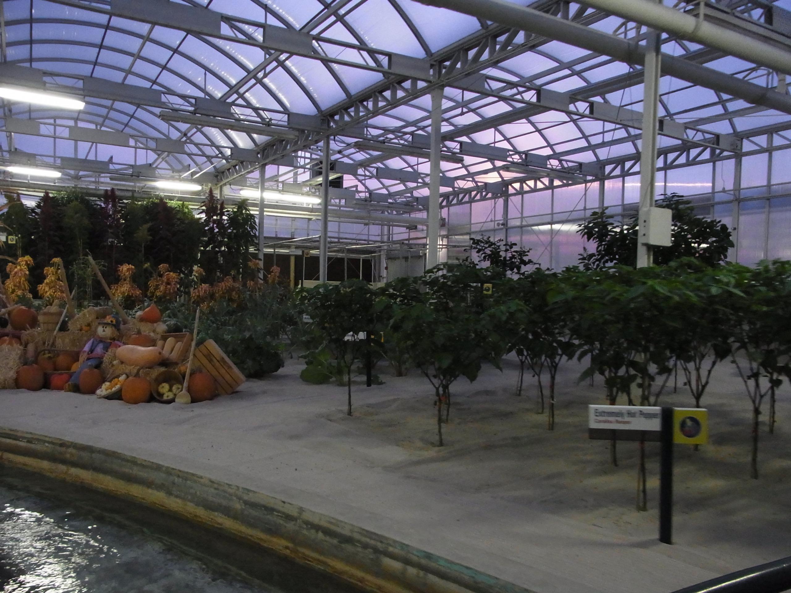 WDW旅行記 71 ガーデングリルでの夕食の前にリビング・ウィズ・ザ・ランドで予習